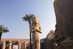 Colosso 86 di Ramses II Immagini Stock