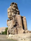 Colossus of Memnon Stock Images