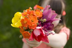 Colour bouquet Stock Photo