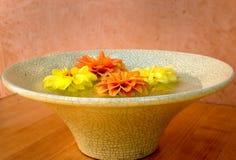 Colour bowl. Floating Dahlia flowers stock images