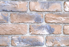 Colour brick wall background Stock Photography