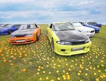 Colour cars and fruit on grass Royalty Free Stock Photography