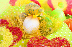 Colour decoration with easter egg Royalty Free Stock Photo