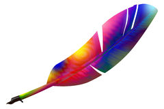 Colour feather Stock Images
