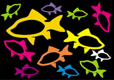 Colour fishes. Colour fish on black background Stock Image