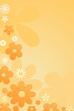 Colour  flowers background Stock Photography