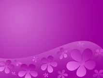 Colour  flowers background. In lilac and pink colours Stock Image