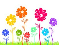 Colour flowers on green grass isolated Royalty Free Stock Photography