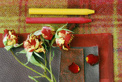 Colour harmonisation for interior Royalty Free Stock Images