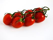 Red, Ripe, Tomato on the Vine Royalty Free Stock Photo