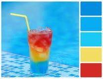 Colour koktajl z paleta koloru swatches Obrazy Stock