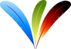 Colour lightness. Multi-colored feathers out of the parrot on a white background. Vector drawing Stock Photography