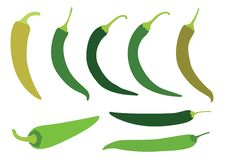 Colour green chilli pepper on white background royalty free illustration