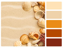 Colour palette swatch. Colour palette with complimentary swatches Stock Images