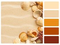Colour palette swatch. stock images