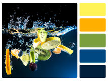 Colour palette swatch. Royalty Free Stock Photography