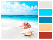 Colour palette swatch. Stock Image