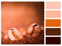 Colour palette swatch Stock Photography