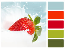 Colour palette swatch. Stock Photography
