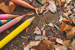 Colour Pencils and Shavings Stock Image