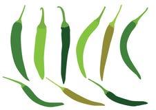 Green chilli on white background stock illustration
