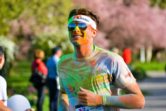 Colour Run 2014 Royalty Free Stock Images