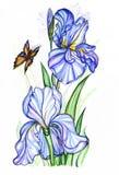 colour rysująca taffies woda Zdjęcie Royalty Free