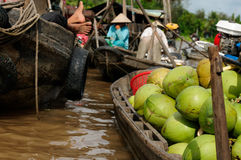 Colour swimming markets in Vietnam in the Mekongu delta Stock Photography
