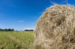 colour wsi haystacks target2168_1_ sepia Zdjęcie Stock