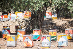 Coloured beehives at Thassos Stock Photo