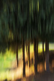 Coloured blurred trailed trees Stock Photos