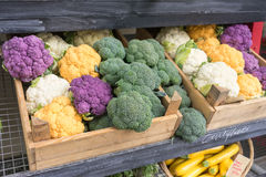 Coloured brocolli and cauliflour Stock Photos