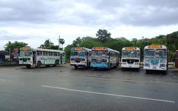 Coloured buses in Galle Royalty Free Stock Image