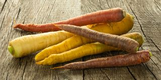 Coloured carrots raw on wood. Coloured carrots vegetable raw on wood in back lit stock photo