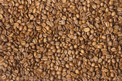 Coloured coffee texture. Coffee beans closeup Stock Images