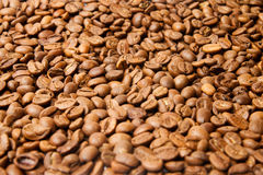 Coloured coffee texture. Coffee beans closeup Royalty Free Stock Photography