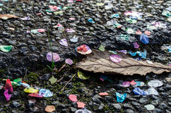 Coloured confetti lies on the ground. Coloured confetti lies on a bitumen surface with fallen autumn leaves royalty free stock photography