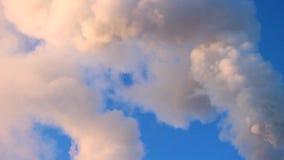Coloured dym od drymby zbiory wideo