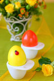 Coloured  easter eggs Stock Image
