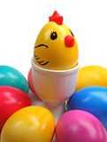 Coloured easter eggs and chicken. On a white background Royalty Free Stock Photo