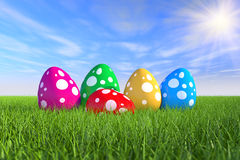 Coloured Easter eggs on meadow 01 Royalty Free Stock Photo