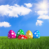 Coloured Easter eggs on meadow 02 Stock Images