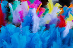 Coloured easter feathers. Soft and colourful easter feathers in blue Royalty Free Stock Images