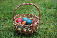 Coloured eggs in a basket Royalty Free Stock Photos