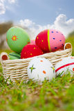 Coloured eggs on meadow Royalty Free Stock Photography