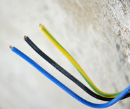 Coloured electric wires Stock Photography
