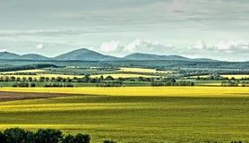 The coloured fields stock photos