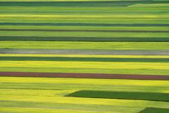 Coloured fields Royalty Free Stock Photos