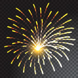 Coloured firework isolated on transparent background. Vector illustration Royalty Free Stock Photography