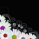 Coloured flowers with swirls vector Royalty Free Stock Photography
